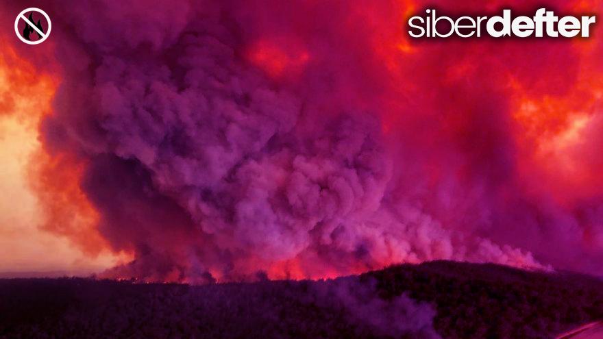 Avustralya Yangınları Hakkında Her Şey!